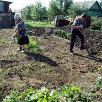 Утверждено Положение о земельном налогооблажении на территории муниципального образования «Разночиновский сельсовет»