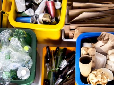 Введены региональные штрафы за длительное хранение отходов и ТКО и порубочных остатков